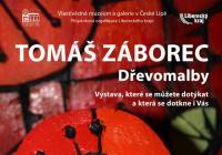 Tomáš Záborec / Dřevomalba