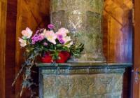 Výstava květin Amarylis na zámku Třeboň