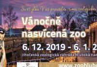 Vánočně nasvícená Zoo Hluboká nad Vltavou