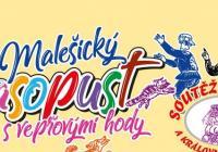 Malešický masopustní průvod 2019 - Praha