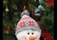 Rozsvícení vánočního stromu - Slavičín