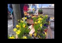Tišnovské velikonoční trhy
