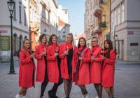 Plzeňský festival vína 2019 - podzim