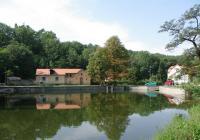Výlov Dolnomlýnského rybníka