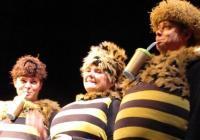 Zimní příběhy včelích medvídků