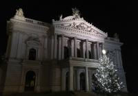 Rozsvícení vánočního stromu - Mahenovo divadlo Brno