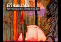 Jiří Hauschka / Sovy nejsou tím, čím se zdají být