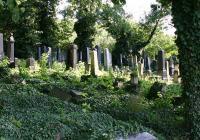 Židovský hřbitov Most