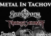 Metal in Tachov heart