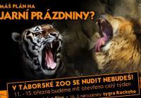 Jarní prázdniny v Zoo Tábor