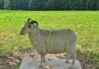 Pomník valašské ovci, Staré Hamry