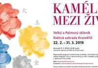 Kamélie mezi živly - Zámek Kroměříž