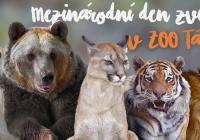 Mezinárodní den zvířat v Zoo Tábor