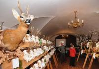 Chovatelská přehlídka trofejí na zámku Náměšť nad Oslavou