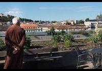 Terasa Nemocnice Milosrdných bratří, Brno