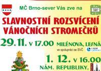 Rozsvícení vánočního stromu - Brno Černá Pole