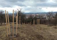 Park Bohumila Hrabala, Brno
