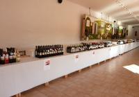 Festival moravských vín a popíjení burčáku
