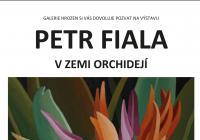 Země orchidejí Petra Fialy v českobudějovické Galerii Hrozen