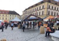 Májové ležáky v máji na Zelném trhu - Brno