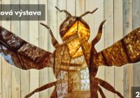 Včela / Cesta do včelího města