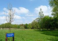 Arboretum Stromovka, České Budějovice