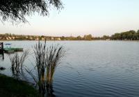 Rybník Barbora