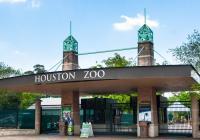 Virtuální prohlídky - Houston Zoo