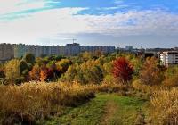 Centrální park Stodůlky
