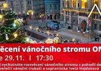 LIVE stream - Rozsvěcení vánočního stromu on-line v Liberci