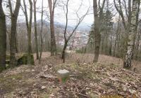 Borský vrch - Current programme