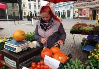 Farmářské trhy 2020 na náměstí v Opavě