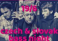 Czech & Slovak Bass Night