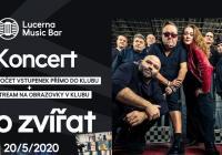 E-koncerty - Sto zvířat