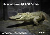 Prohlídka Krokodýlí zoo 2020