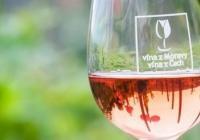 Růžové léto ve svatováclavské vinici – pokračuje!
