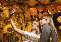 Selfie Market umělecká expozice