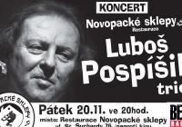 Luboš Pospíšil trio