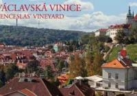 Tradiční Svatováclavské vinobraní na Pražském hradě