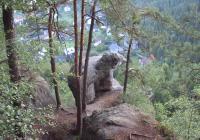 Vyhlídka na medvěda