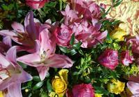 Květiny pro hraběnku Annu