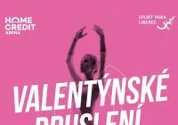 Valentýnské bruslení - Liberec