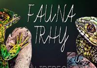 Fauna Trhy Liberec