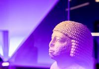 Komentované prohlídky výstavy Sluneční králové