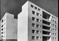 Duch, který pracuje / Architektura a česká politika 1918–1945
