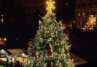 LIVE stream - Rozsvícení vánočního stromu Karlovy Vary