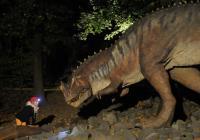 Noční prohlídky Dinoparku Vyškov