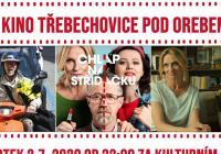 Letní kino Třebechovice pod Orebem - Chlap na střídačku