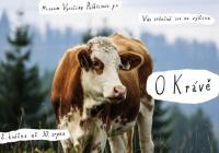 O Krávě