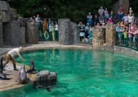 První školní den v Zoo Praha